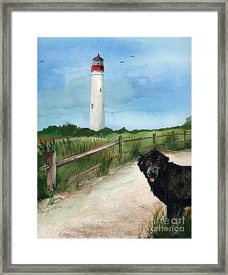 Newfy At Cape May Light  Framed Print by Nancy Patterson