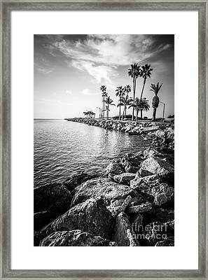 Newport Beach Jetty Black And White Photo Framed Print by Paul Velgos