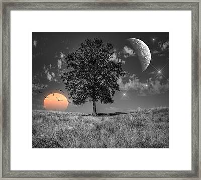 Night And Day Framed Print by Marianna Mills
