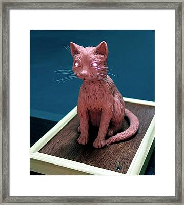 Night Cat Framed Print by Yelena Rubin