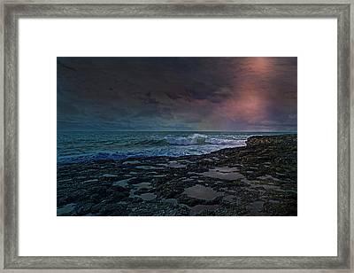 Night Life Framed Print by Betsy C Knapp