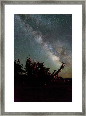 Night Pines At Crater Lake Framed Print by Cat Connor