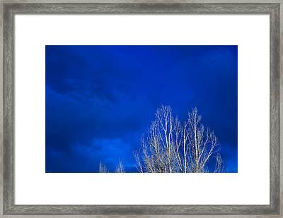 Night Sky Framed Print by Steve Gadomski