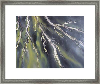Night Willow Framed Print by Anna Villarreal Garbis