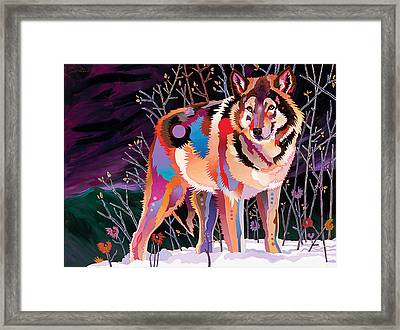 Night Wolf Framed Print by Bob Coonts