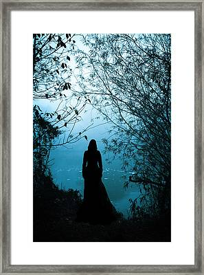 Nightfall Framed Print by Cambion Art