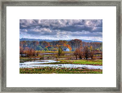 Nisqually Wildlife Refuge P34 Framed Print by David Patterson