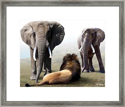 No Fear Framed Print by Bill Stephens