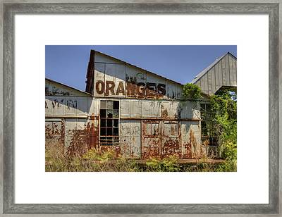 No More Juice Framed Print by Andrew Armstrong  -  Mad Lab Images