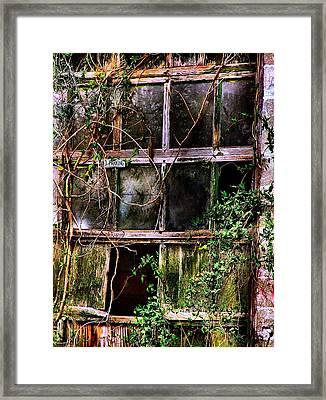 No Parking Framed Print by Julie Dant