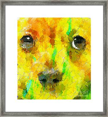Noise And Eyes In The Colors Framed Print by Stefano Senise