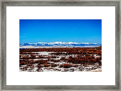 North Park Framed Print by Jon Burch Photography