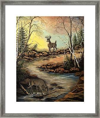 North Shore Hidden Creek Framed Print by Kimberly Benedict