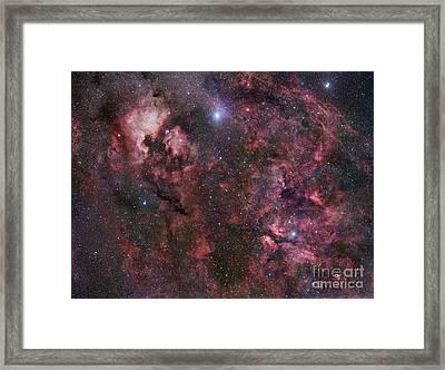 Northern Cygnus Framed Print by Robert Gendler