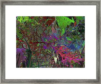 Not To Let The Serreal Of Nature Hide Framed Print by Kenneth James