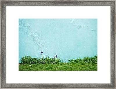 Nougat Framed Print by Tom Gowanlock