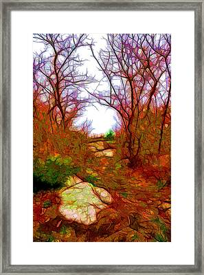 November Fantasy Framed Print by Lilia D