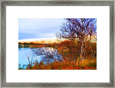 November Is Here Framed Print by Lilia D