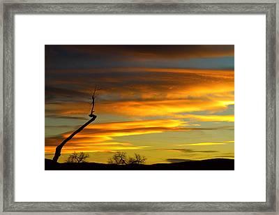November Sunset Framed Print by James BO  Insogna