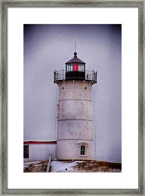 Nubble Il Framed Print by Tricia Marchlik