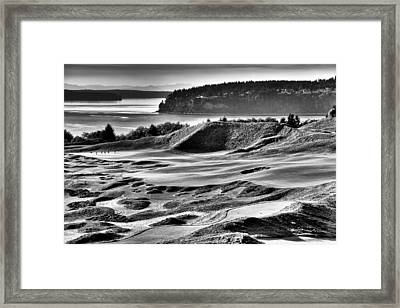 Number 14 At Chambers Bay Framed Print by David Patterson
