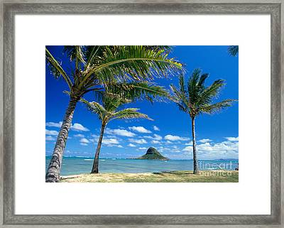 Oahu, Mokolii Island Framed Print by Peter French - Printscapes