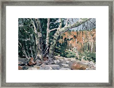 Oak Creek Canyon Framed Print by Donald Maier