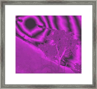 Oak Creek Framed Print by Jeff Swan