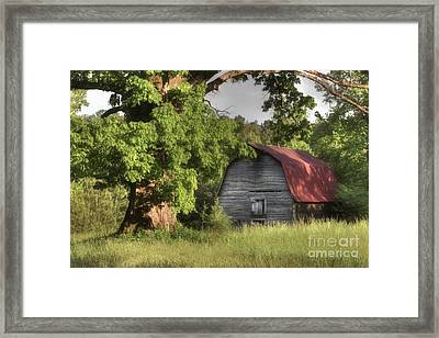 Oak Framed Barn Framed Print by Benanne Stiens