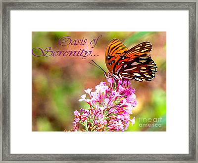 Oasis Of Serenity Framed Print by Gardening Perfection