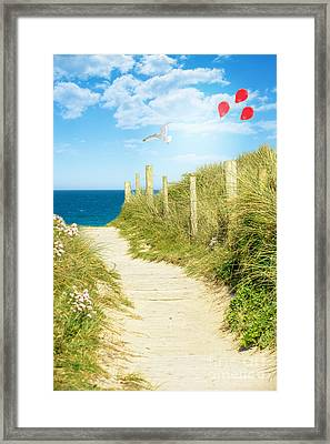 Ocean Path In Cornwall Framed Print by Amanda And Christopher Elwell