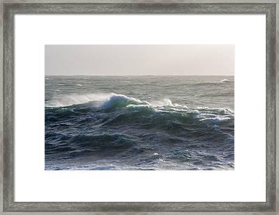 Ocean Wilderness Framed Print by Sophie De Roumanie