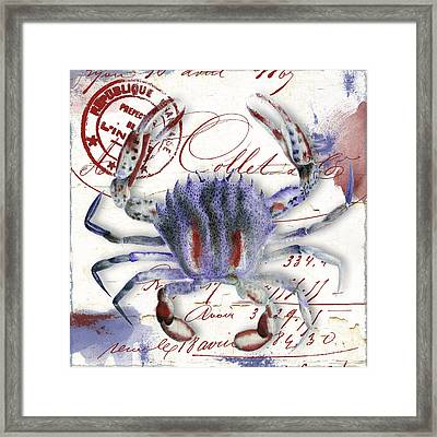 Oceania II Framed Print by Mindy Sommers