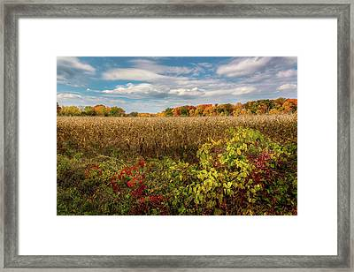 October Framed Print by Bill Wakeley