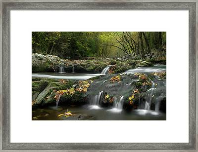 October In The Smokies Framed Print by Michael Eingle