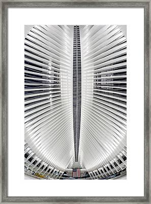 Oculus World Trade Center Wtc Skylight Framed Print by Susan Candelario