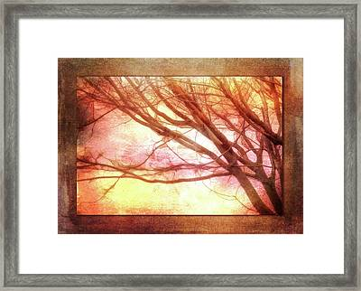 Ode To Autumn Framed Print by Terry Davis