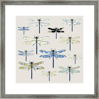 Odonata Framed Print by Sarah Hough