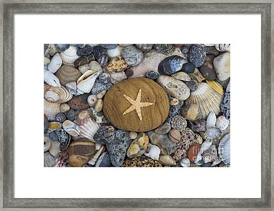 Of The Beach Framed Print by Tim Gainey
