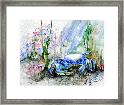 Oh Crab Framed Print by Marsha Elliott