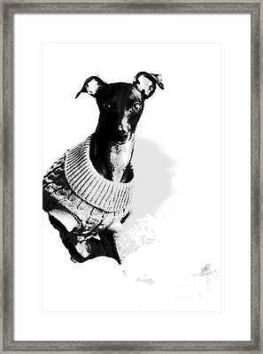 Oh Those Eyes Black And White 2 Framed Print by Angela Rath