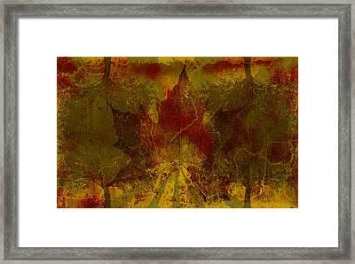 Ok Fall Framed Print by Shawn Ross