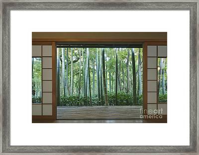 Okochi Sanso Villa Bamboo Garden Framed Print by Rob Tilley