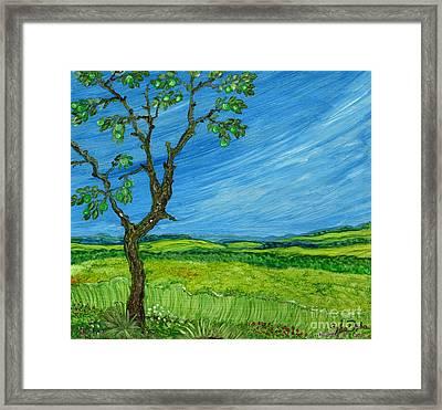 Old Apple Tree Framed Print by Anna Folkartanna Maciejewska-Dyba