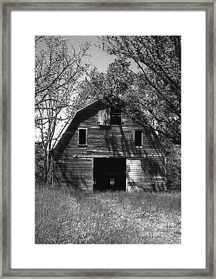 Old Cedar Barn Framed Print by Richard Rizzo