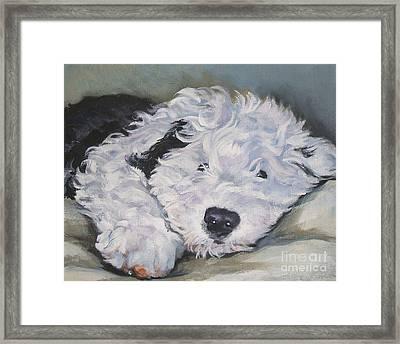 Old English Sheepdog Pup Framed Print by Lee Ann Shepard
