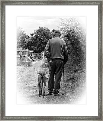 Old Friends Framed Print by Linsey Williams