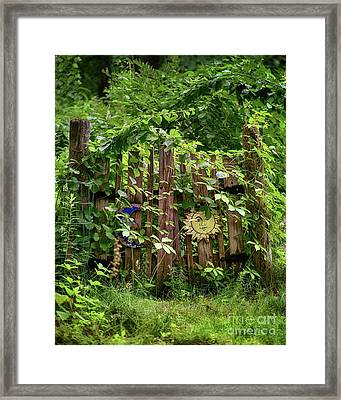 Old Garden Gate Framed Print by Mark Miller