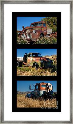 Old Guys Trio 4 Framed Print by Idaho Scenic Images Linda Lantzy