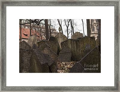 Old Jewish Cemetery In Prague Framed Print by Juli Scalzi